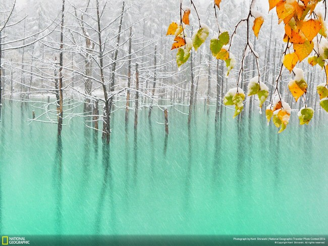 pictures of nature - Biei in Hokkaido, Japan