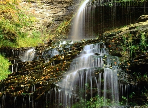 Cathedral Falls Is One Of West Virginias Highest And Most Scenic Waterfalls It A Steep Cascade That Into Natural Ampitheatre