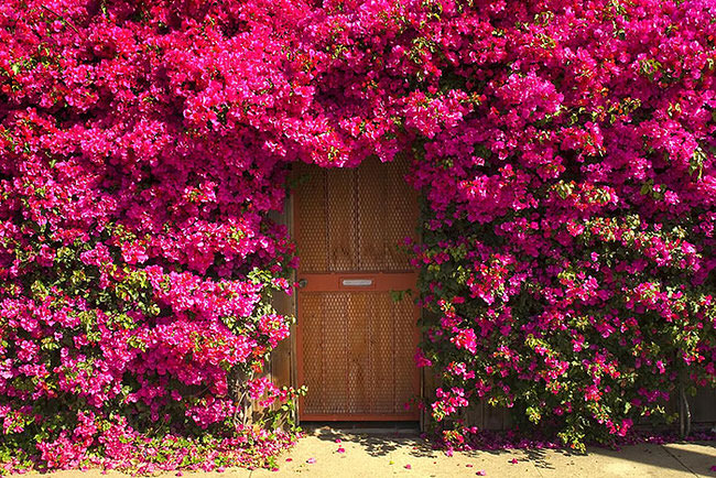 most-beautiful-doors-in-the-world-2 & 25 Of The Most Beautiful Doors Around The World
