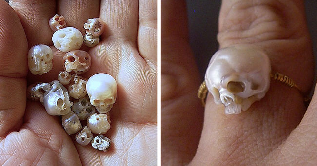 carved-pearl-skulls-jewelry-cover