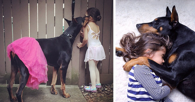 cutie-and-the-beast-dog-and-girl-doberman-best-friends-cover