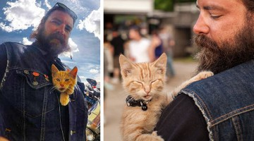 Biker Saves Severely Injured Kitten, Keeps On Cross-Country Journey With Him