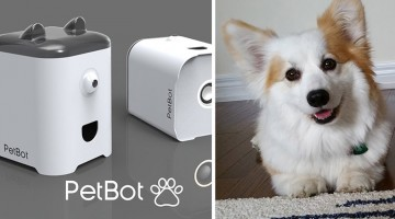 This New Device Will Send You Your Dog's Selfies When You're Away From Home