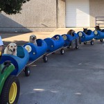 80-Year-Old Man Creates Dog Train To Take Rescued Dogs Out For Fun Rides