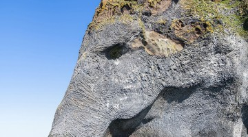 This Cliff Face In Iceland Perfectly Resembles An Elephant