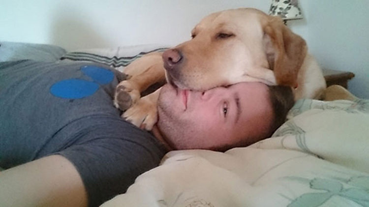 30 Dogs That Have No Respect For Your Personal Space Top13