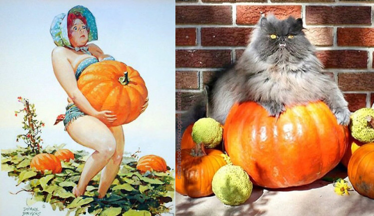 cats-paired-with-pin-up-girls-12
