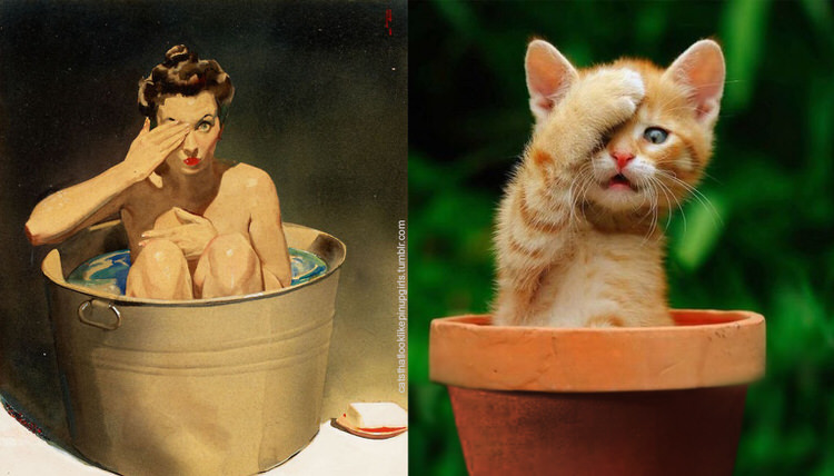 cats-paired-with-pin-up-girls-13