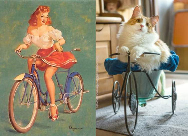 cats-paired-with-pin-up-girls-8