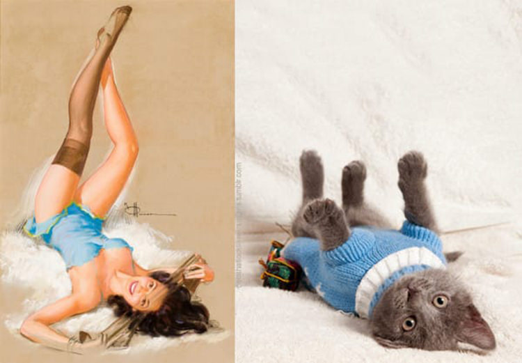 cats-paired-with-pin-up-girls-9