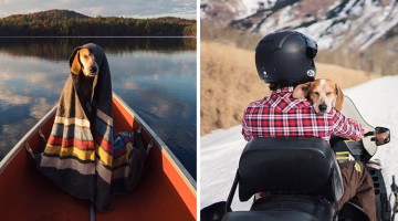 Photographer Takes His Best Friend On Epic Adventures