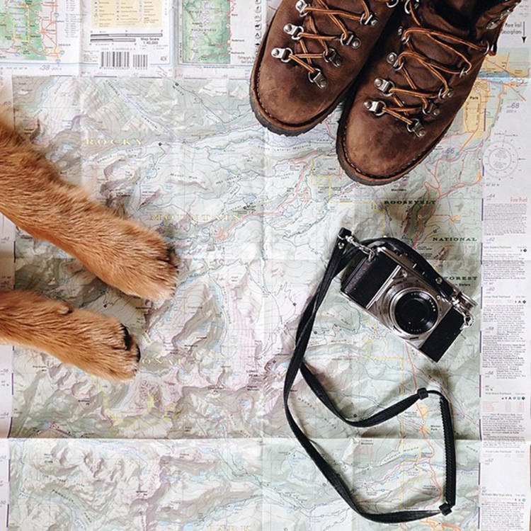 photographer-takes-dog-on-adventures-1