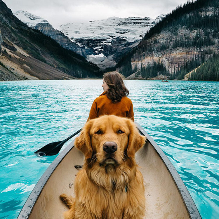 photographer-takes-dog-on-adventures-7