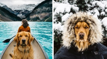 Photographer Takes His Dog On Epic Adventures