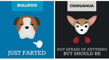 12 Illustrations With Slogans About Dog Breeds To Make Fun Of Stereotypes