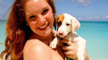 Puppy Island: A Place In The Caribbean Where You Can Play And Adopt Puppies