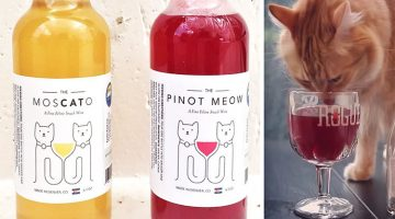 New Catnip Wine Allows Your Cat To Be Your Drinking Buddy