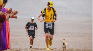 Stray Dog Joined Runner in a 155-Mile Race And Ended Up Getting Adopted