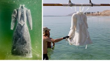 Artist Left Dress In The Dead Sea For 2 Months And It Became A Salt Crystal Masterpiece