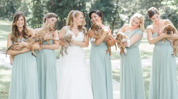 Bridesmaids Carry Rescue Puppies Instead of Flowers