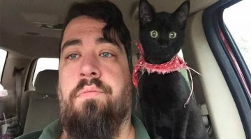 Man Saved Kitty And She Claimed Him As Family Right Away