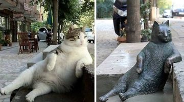 World Famous Cat Gets Honored With A Statue