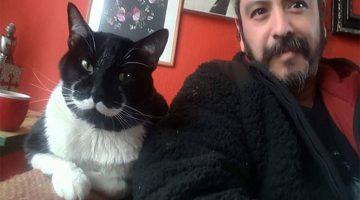 Family Adopts A Tuxedo Cat With The Most Perfect Mustache