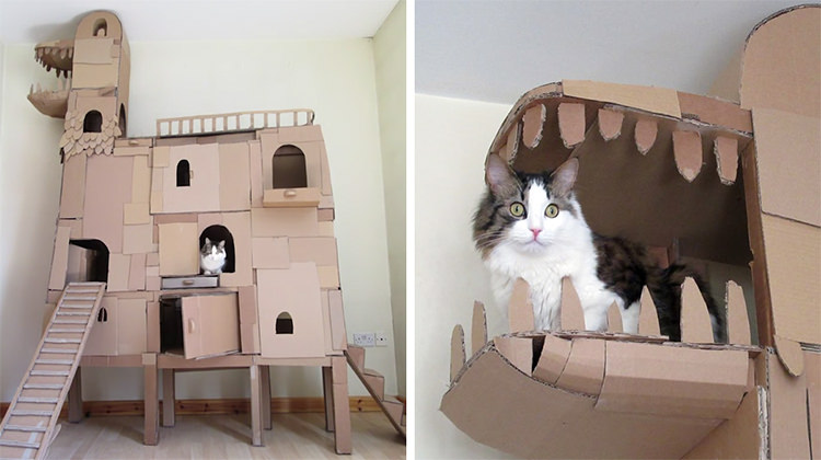 Man built a dragon shaped castle to make his cat happy top13 for Castle cat tower
