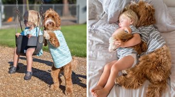 Boy And His Labradoodle Dog Have The Most Adorable Friendship Ever