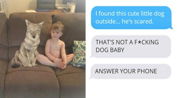 Wife Texts Husband She Brought A Puppy Home While The Pic Shows A Coyote, And He Totally Freaks Out