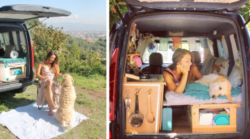 Woman and Her Dog Take to the Road in Van She Restored on Her Own