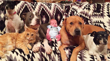 Baby Bro in a Family of Pets is Protected at Every Turn