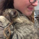 Woman Touched by Shelter Cat's Loving Embrace