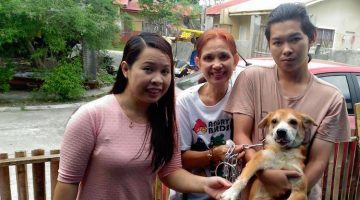 """Woman Adopts 75 Dogs To Save Them From Scheduled """"Mercy Killing"""""""