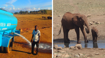 Man Drives Hours In Drought Every Day To Bring Water To Thirsty Animals