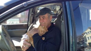 The Biggest Heart in Hartford – This Man Has Been Feeding Stray Cats for 22 Years