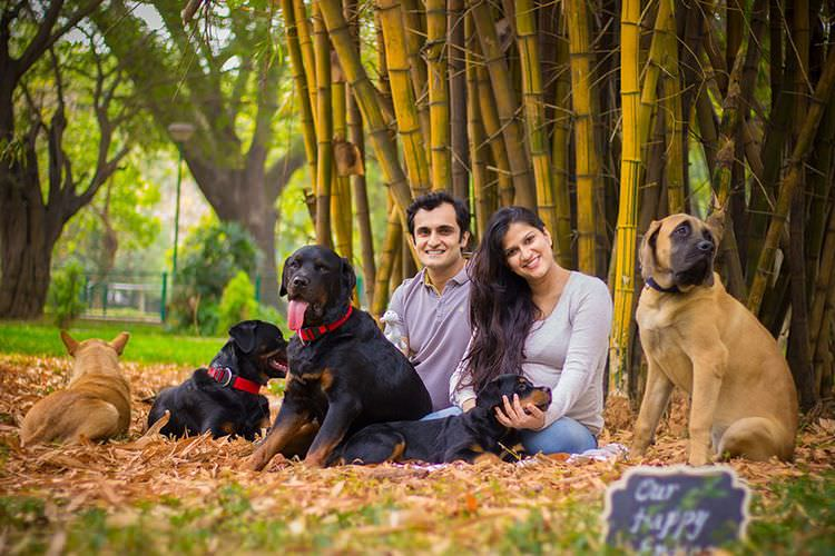 pregnant-couple-dogs-photoshoot-1