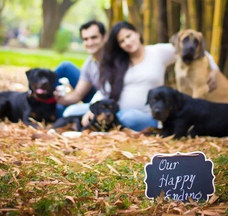 pregnant-couple-dogs-photoshoot-10