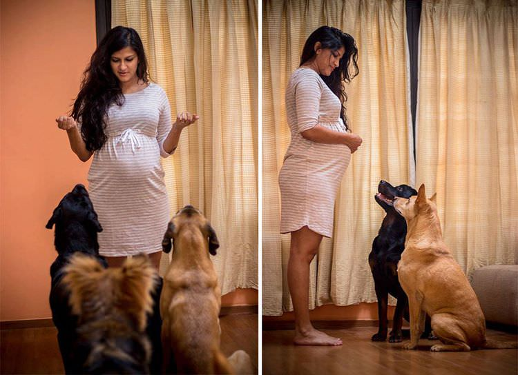 pregnant-couple-dogs-photoshoot-4