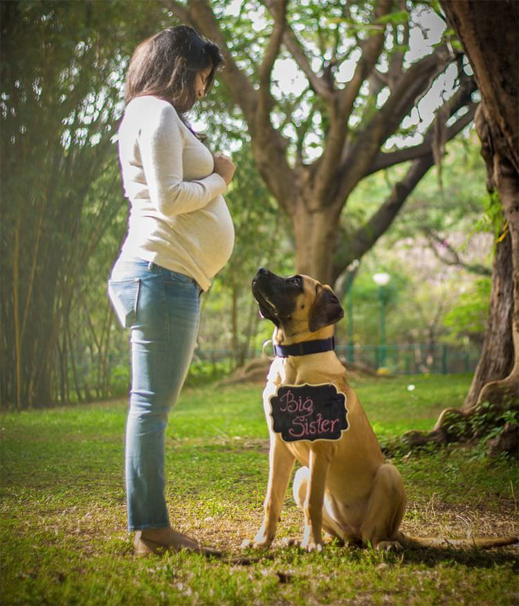 pregnant-couple-dogs-photoshoot-8