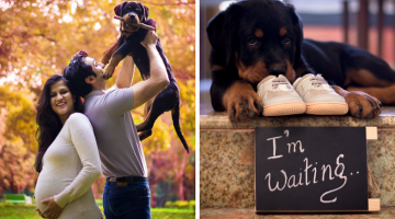 People Told Them To Ditch Their Dogs to Make Room for Their Baby. This Is How They Answered!