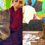 Dog Abandoned By Breeder Now Works At An Art Gallery