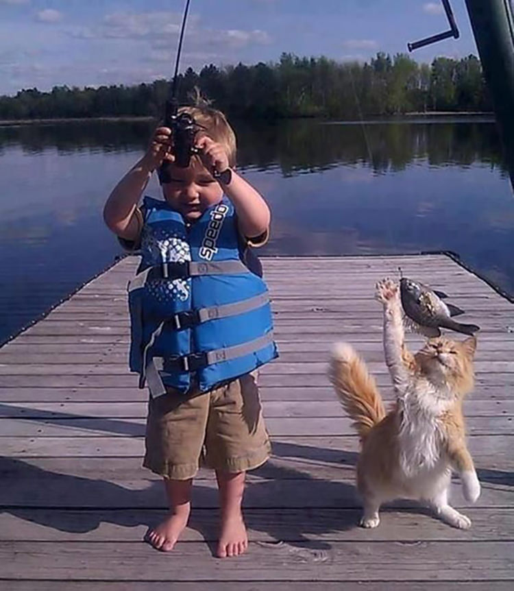 pets caught red-handed