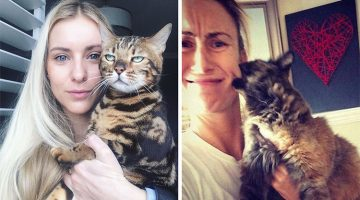 18 Times Cats Hated Your Selfies But The Results Were Extremely Funny
