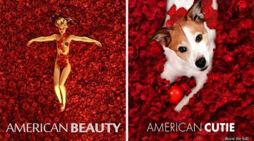 Dog Owner Photoshops Her Dog Into Movie Posters (13 Photos)