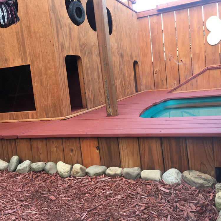 Man Spends 2 Years Turning His Backyard Into An Awesome ...