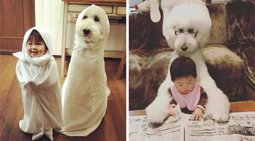 This Little Japanese Girl And Her Poodle Bestie Are The Cutest Thing You'll See Today