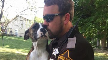 Dog Abandoned In Park Gets Adopted By The Cop Who Rescued Her