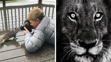 These Incredible Animal Photos Show Why Steve Irwin's Son Is An Award Winning Photographer