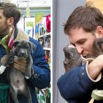 Adorable Pictures Of Tom Hardy With Puppies Are Going Viral, And They Will Melt Your Heart